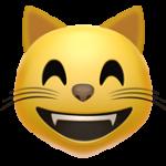 Смайл Кот с улыбкой ВКонтакте