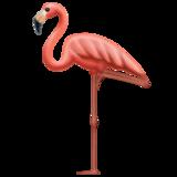 Смайл Фламинго ВКонтакте