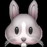 Смайл Морда кролика ВКонтакте