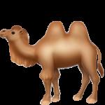 Смайл Двугорбый верблюд ВКонтакте
