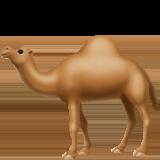 Смайл Одногорбый верблюд ВКонтакте